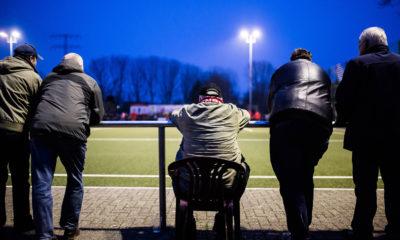 Vereine, Fans